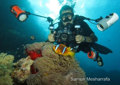 underwater-photos118