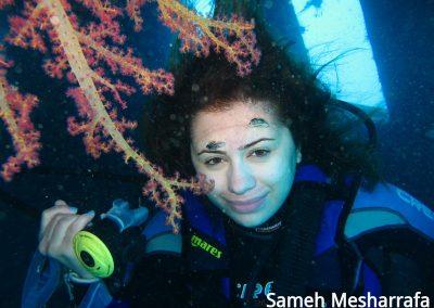 underwater-photos31