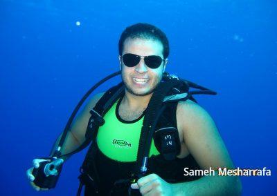 underwater-photos54