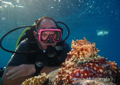 underwater-photos87